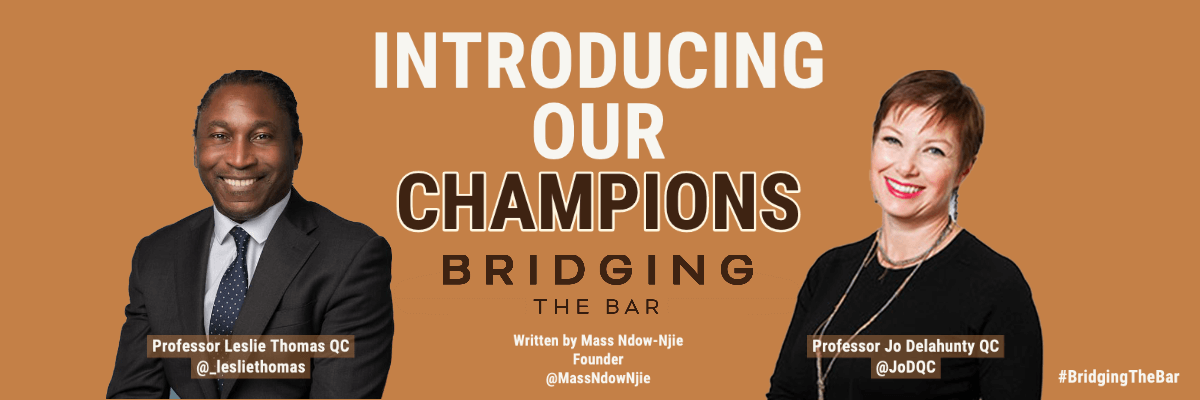 Introducing the Bridging the Bar Champions